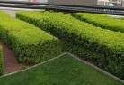 Ada Commercial landscaping 1