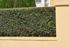 Ada Hard landscaping surfaces 8