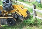 Ada Stump grinding services 3